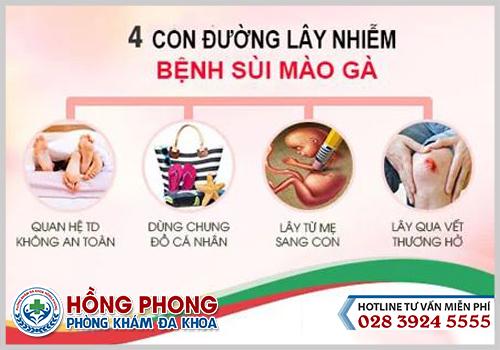 Con-duong-lay-benh-sui-mao-ga