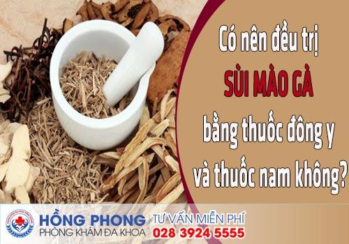 co nen dieu tri sui mao ga bang thuoc dong y va thuoc nam khong